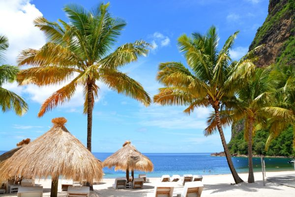 Caribbean Offers