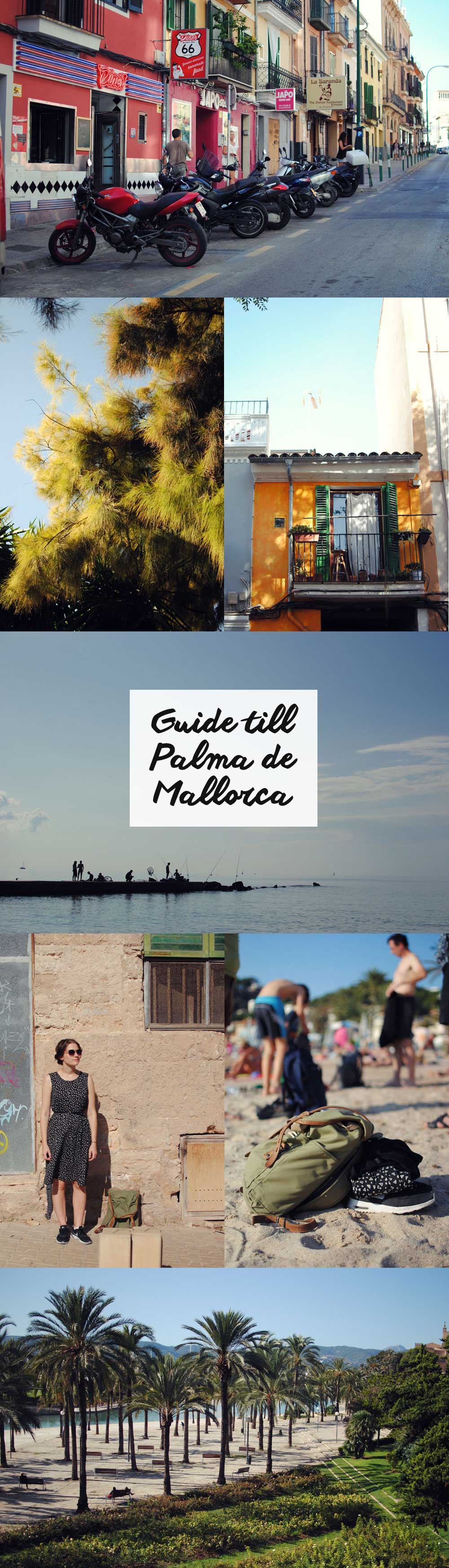 Guide till Palma de Mallorca | Frk. Kräsen