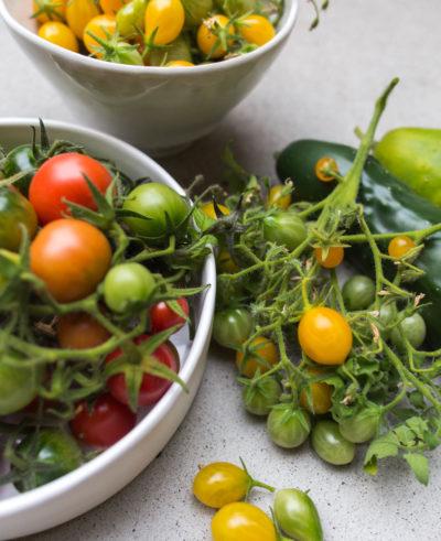 Odla tomat på balkongen
