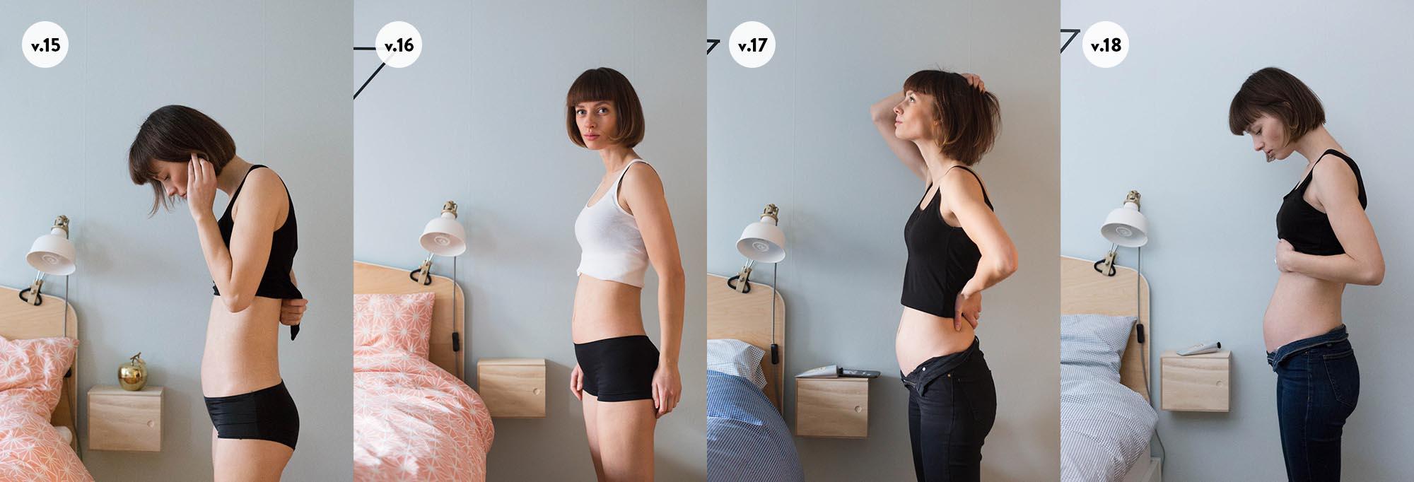 Gravid v15-v18