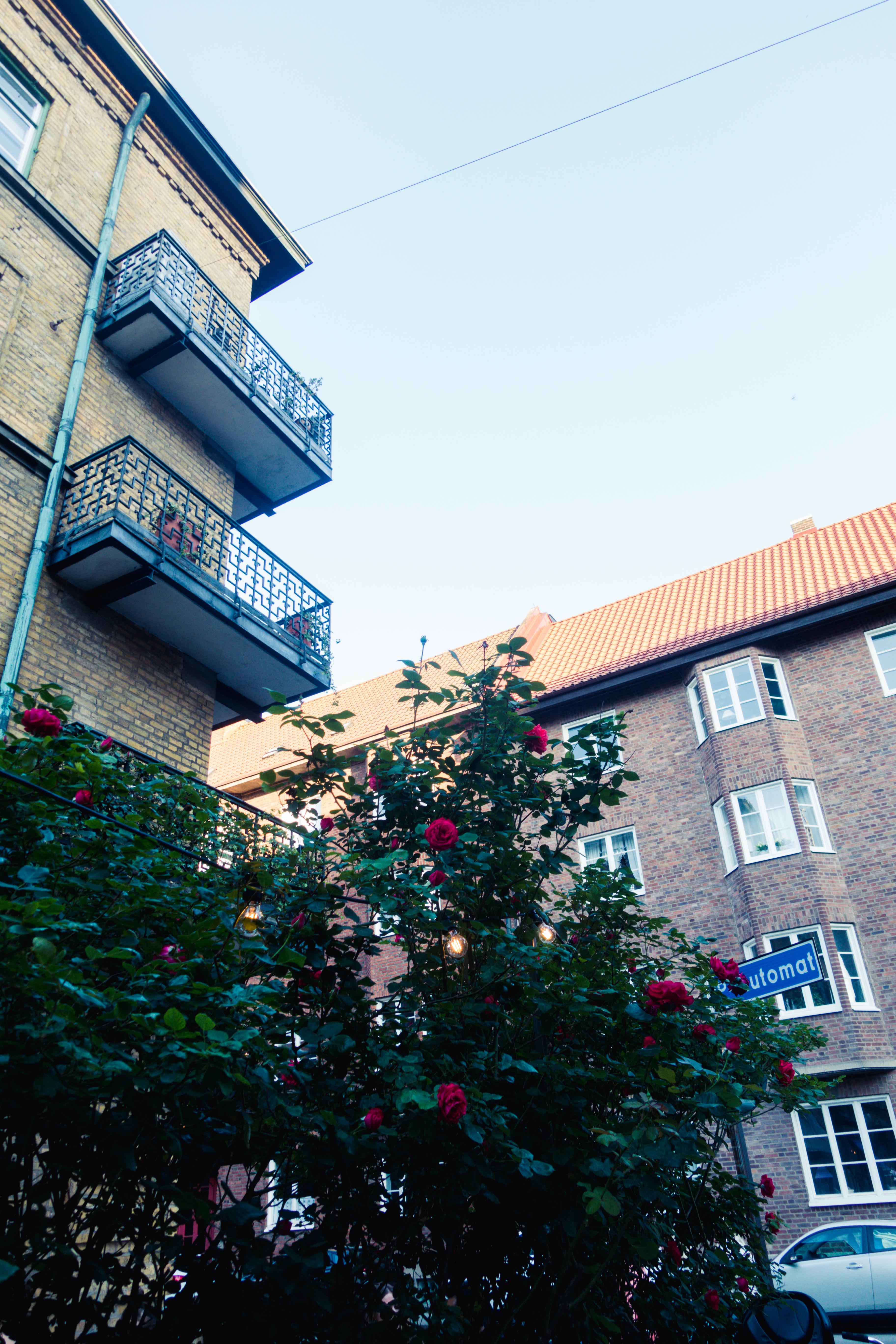 Restaurang Riket Malmö Davidshall