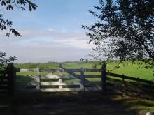 Friesland - Boerenland