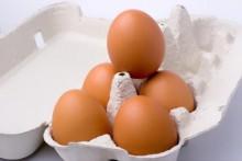 Advocaat en eieren in de Aalshof
