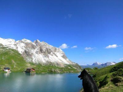 La Loupe Arlguide Lech Zürs 4