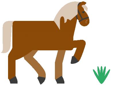Ll Noe Pferd Illus 03 Png20180131 22583 1Q1Ijmq