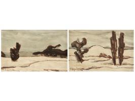 Peisaje de Iarnă (Winter Landscapes)