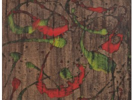 The Breaking of the Plastic Sign (Spargerea Semnului Plastic)