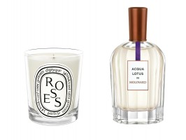 Acqua Lotus Perfume for Her by Molinard and Diptyque Roses Scented Candle