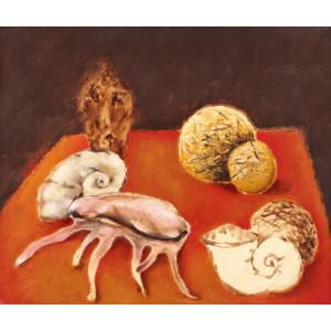 Snails, Shells and Balls of Thread (Melci, Scoici și Gheme)