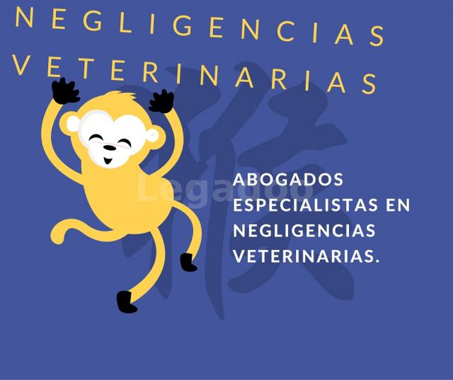 Abogados Especialistas en Negligencias Veterinarias