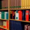 Falso testimonio de testigo en causa judicial | Legadoo Abogados información legal