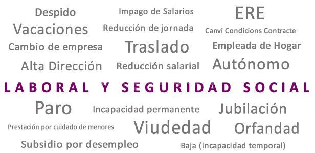 Derecho laboral y Seguridad Social - Luis Cebrián García