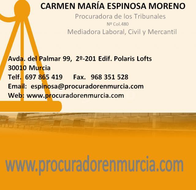 PROCURADOR EN MURCIA, MOLINA DE SEGURA, SAN JAVIER, TOTANA, CIEZA Y CARTAGENA - CARMEN MARIA ESPINOSA MORENO