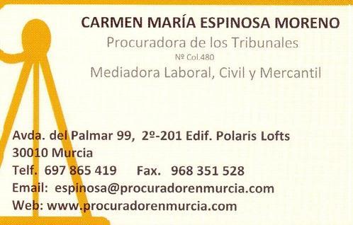 PROCURADORES MURCIA, CARTAGENA, MOLINA DE SEGURA, CIEZA, MULA Y SAN JAVIER  - PROCURADOR MURCIA