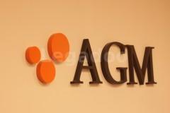 AGM - Agm Abogados