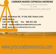 PROCURADORES MURCIA  - CARMEN MARIA ESPINOSA MORENO