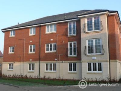 Property to rent in Wilkie Place, Larbert