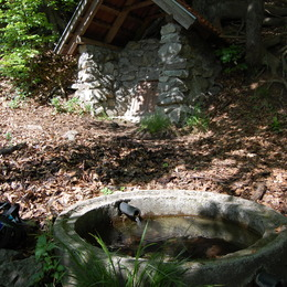 Malé Karpaty a Považský Inovec #33