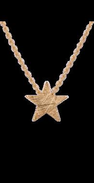 Halsk%c3%a6de med stjerne guld