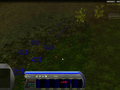 Achron_jan_2010_screenshot_02