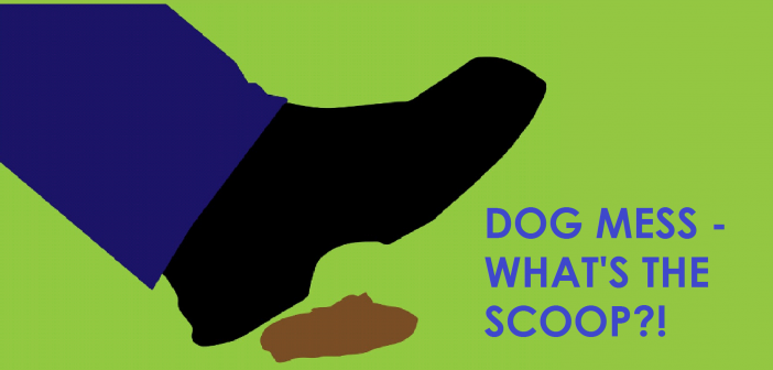Dog Mess – what's the Scoop?!