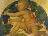 Putto picking Grapes