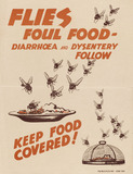 'Flies Foul Food - Diarrhoea and Dysentery Follow', 1944 (c)