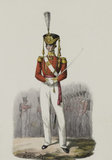 83rd Regiment, Officer, 1828