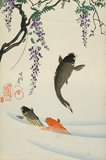 Leaping Carp and Wisteria