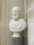Bust (C19th English) of William Henry Pole-Carew (1811-88) in the Porch at Antony House