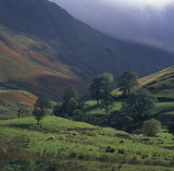 Pasture Bottom near Hartsop, sheep are grazing in the sun but mist shrouds the surrounding hills