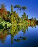 Diverse species of colourful trees against a bright blue sky are strongly reflected in the blue, still middle, lake in Sheffield Park Garden in East Sussex