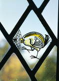 Detail of painted glass panel in the bay window showing a bird and spider's web, in the Great Hall at Packwood House