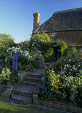 Alfriston Clergy House - view of the garden and rear of the house