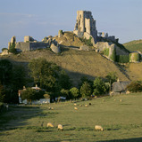 The ruins of Corfe Castle in Dorset, with sheep in a field in the foreground