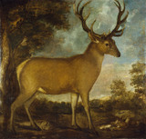 THE DERBY STAG seen against wild countryside and a cloudy sky, oil painting, post-conservation, at Lyme Park