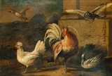 Poultry in Landscape painted in the style of Hondecoethe