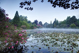 Middle Lake, early morning in May at Sheffield Park and Garden, East Sussex.