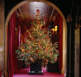 A brightly illuminated and decorated Christmas tree in a wooden plant container in an arched doorway at Waddesdon Manor