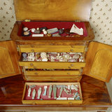 Close-up of cabinet of curiosities - with drawers open, in the Morning Room at Peckover House