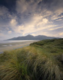 Murlough Dunes at Murlough Beach on the Mourne Coastal Path, County Down