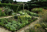 The cottage garden with vegetables, herbs & flowers for the house - a potager