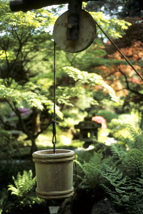 A detail of the well in the Japanese Garden at Tatton Park