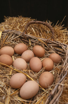 Basket of hens' eggs on straw at the farm shop at Osterley Park