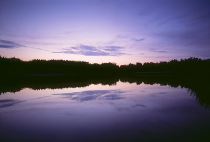 View of the pond at Frensham Common at sunset with the sky reflected in the water