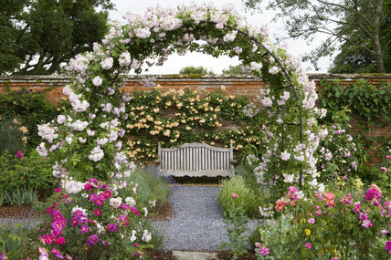 Charmant View Through The Arch, And Bench In The Rose Garden At Mottisfont Abbey,  Hampshire