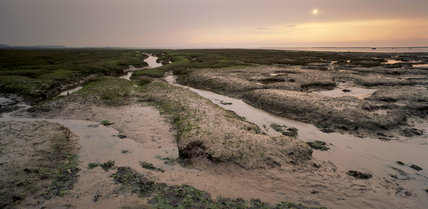 A view of the Blakeney Point landscape depicting a wet grass and sand area interspersed with traces of water