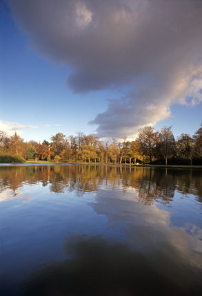 A view across the lake, to the far shore, in autumn colours, in Claremont Landscape Gardens