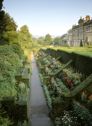 Looking down the Dahlia walk from the Shelter House at Biddulph Grange, with the yew hedges on the right and the house behind
