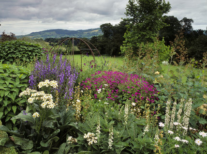 View of the border filled with various flowers and plants on the Orangery Terrace at Powis Castle with the distant hills